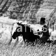 Fotografia: i cavalli e il loro mondo