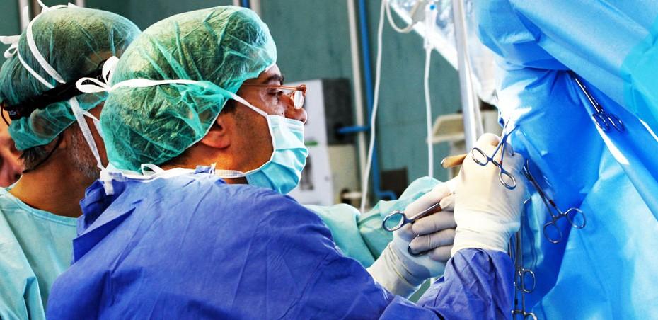 Shooting alla Clinica Veterinaria di San Rossore durante un'operazione chirurgica